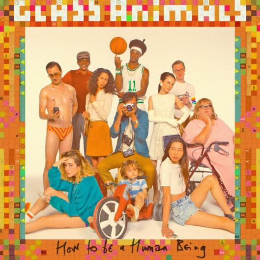 glass-animals-how-to