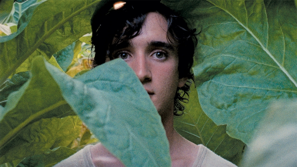 happy-as-lazzaro-cannes